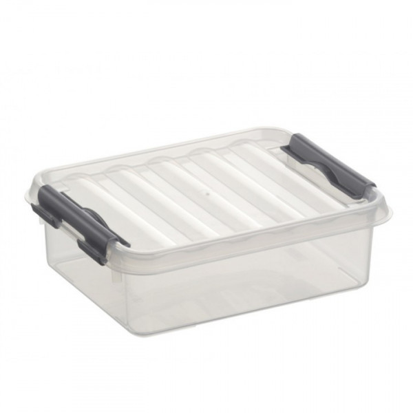 Q-line Box 1L, transp/metallic, 200 x 150 x 60 mm